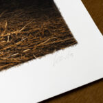 todays-catch-limited-edition-gundog-print-kerto-art-detail1