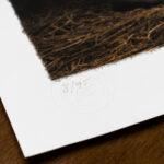 todays-catch-limited-edition-gundog-print-kerto-art-detail2